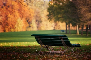 bench_park_autumn_leaves_earth_october_lonely_54034_1944x1295